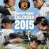 【阪神】盗塁阻止率10割の梅野の肩は今季の「抑止力」に!2015タイガース戦力分析
