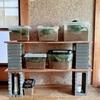 虫カゴ(飼育ケース)置き場をホームセンターでDIYしたよ!コバエ対策方法も一緒に紹介(カブトムシ・クワガタ)