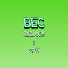 【BEC対策】半年でUSCPA合格【勉強方法】