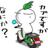 ちょっと、ものたりない西吾妻山に~(;^_^A