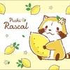 ラスカルの新デザイン「レモンデザイン」グッズ発売!春の新生活にもぴったりです