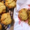 チョコざっくざく 子どもに一番人気のクッキーの作り方