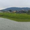 「生駒山系を望む」