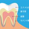 1年に1本は歯が取れる