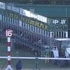 1.24 日曜日 中京競馬 注目馬