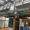 四国🇯🇵列車の旅⑦ 大歩危