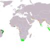 【覇権の歴史】オランダ海上帝国の貿易拠点で、打線を組んでみた【香辛料貿易】