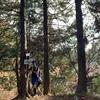 11月29日 比叡山トレイル前半試走。ドMなコースにビビってまいます笑
