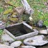 2011年の東北 岩手県遠野市 鱒沢あたりの湧き水