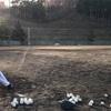 【NSO野球部】早朝球場練習⚾