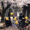【つかもとまさひこ】広島市議選 4/3も元気に皆さまにご挨拶とお願いに走りまわりました!
