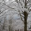新年の武奈ヶ岳「雪は少ないけれど」