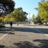 福島区の「下福島公園」では紅葉・イチョウ並木がみれますよ!【大阪府大阪市】