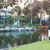 【ハワイ】ヒルトンワイキキハワイアンヴィレッジについて