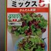 サラダレタスミックスと藻