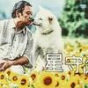【星守る犬】おじさんと犬の幸せなロードムービー