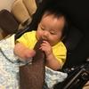 【触覚の発達】赤ちゃんが何でも口に入れる理由は?