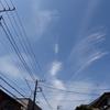 ライヴ2連発レポートその3 (写真は鳳凰あるいはフェニックスの形の雲)