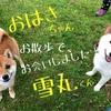再開×2=嬉しい!( ̄(工) ̄)( ̄(工) ̄)