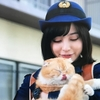 警視庁いきもの係 最終回までの感想!ナオミ役の猫ティティと薄が可愛いすぎる