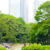 Koishikawa-Kōrakuen garden - 小石川後楽園で森をさまよう