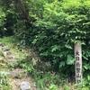 富山のトレイルランナーの定番コース⁈大日岳を踏破