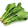 ほうれん草とかいう超わがままな野菜