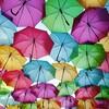 【ヨーロッパ旅近況報告29】ポルトガル・アゲダの傘祭り体験