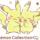 Pokémon Collectionくじ2017を3枚引いてみた結果が凄かった!