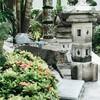 【タイ旅行】バンコクの三大寺院でのびのび過ごす猫ちゃん【写真あり】