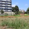 中野区の本二東郷やすらぎ公園の芝そり斜面はいつまで養生中ですか (追記: 閉鎖は1年を超えました)