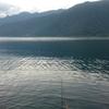 西湖へらぶな釣り 2017.7.4