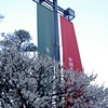 津田ホール「春の宴」
