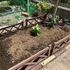 家庭菜園(野菜の植え付け)とガーデンデスク
