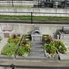 霊園風景 その34 「‥夏の彩り 花のお墓たち」