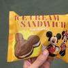 【500分待ちの恐怖】3歳の娘と日曜日の東京ディズニーランドに行ってきた