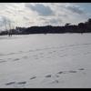 遊びに行った公園がこんなにも雪が積っていたとは…!