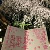 【御朱印プチ情報】八王子・子安神社の夜桜参拝の桜限定御朱印をいただきました【青春18きっぷ】【旅】