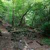 御岳山 ロックガーデンへハイキング