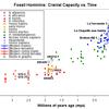 人類の進化と大脳化