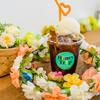 文京区のレストラン人気検索ランキングBest20【Googleローカルガイド編】