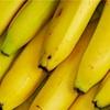バナナの選び方 エネルギー補給だけでないバナナはすごく健康的?