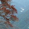 魔の山「大台ヶ原」 ー 遥か向こうに見える滝と絶壁また絶景 ー  紅葉《#8》