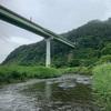#2019-11 【東北】盛川から甲子川のハシゴで大量のデブ鮎を仕留める。