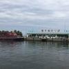 【滋賀の旅 1】 彦根港から赤備えの「直政号」に乗って竹生島へ