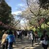 上野公園(去年の)