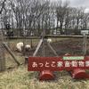 【春の道東旅行】子連れドライブの立ち寄りに!明郷 伊藤牧場