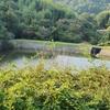 浦田真弓池と修景池(岡山県倉敷)