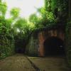 撮影記 「猿島の史跡 」