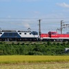 第999列車 「 甲118 JR貨物 DD200-3の甲種輸送を狙う 」